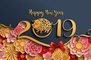 Lời chúc tết hay và ý nghĩa năm 2019 KỶ HỢI cho bạn bè và người thân