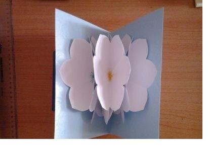Hướng dẫn cách làm thiệp 3D hoa giấy tươi khoe sắc